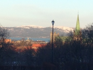 Downtwon Trondheim from the NTNU campus.